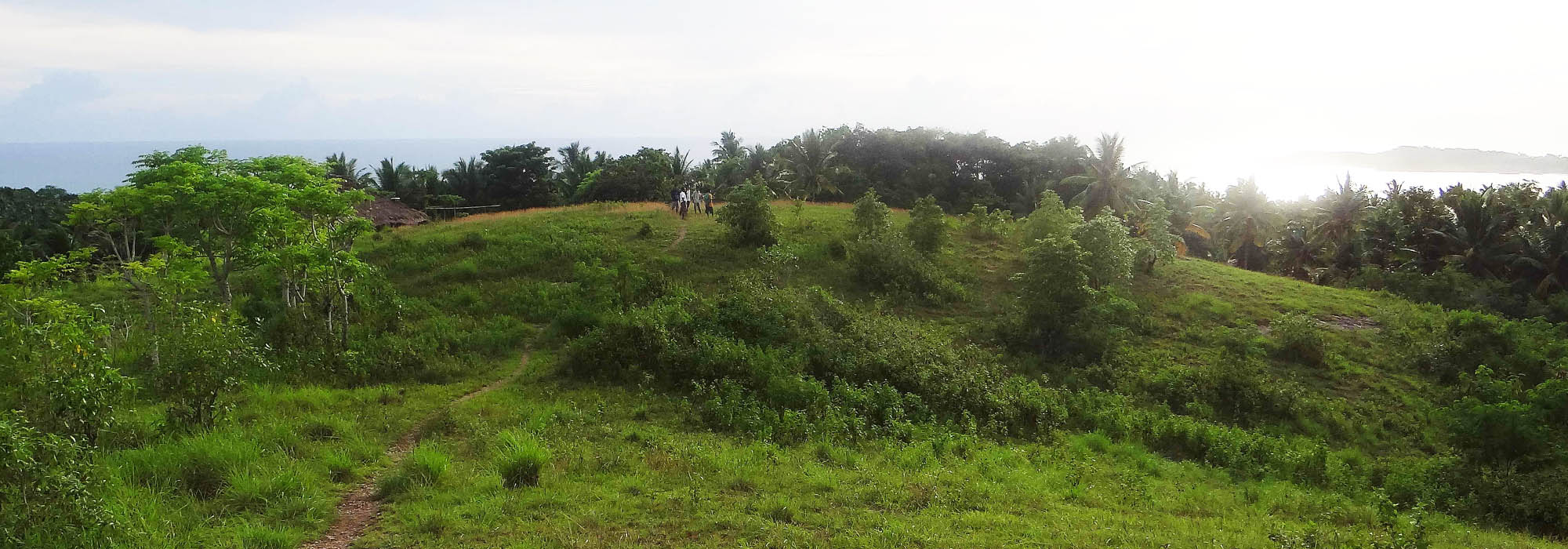 Palamoko South SUMBA Land for Sale 3894 m²