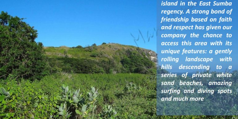 east-sumba-project-beach-front-land